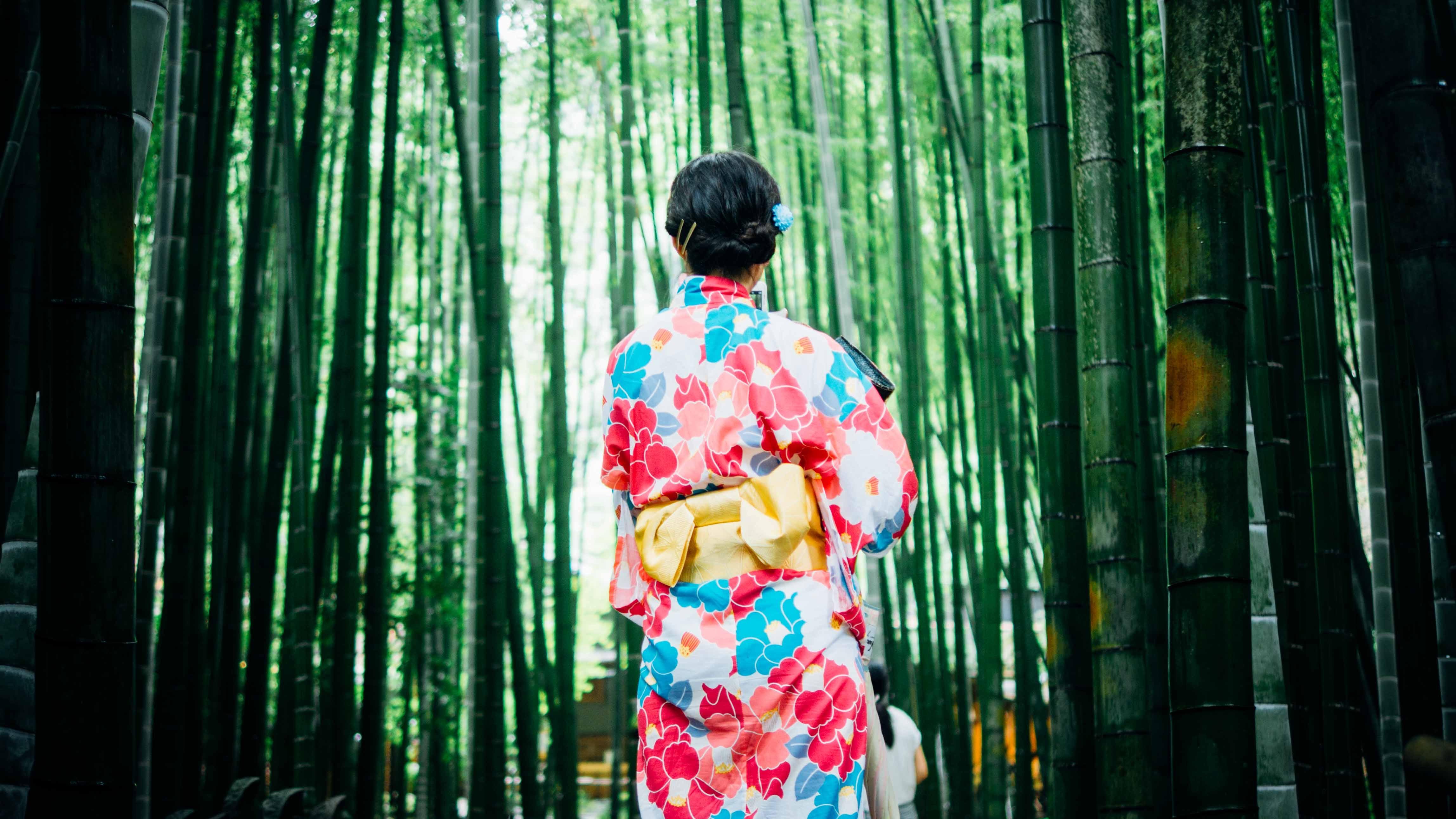 Au cœur du patrimoine mondial du Japon