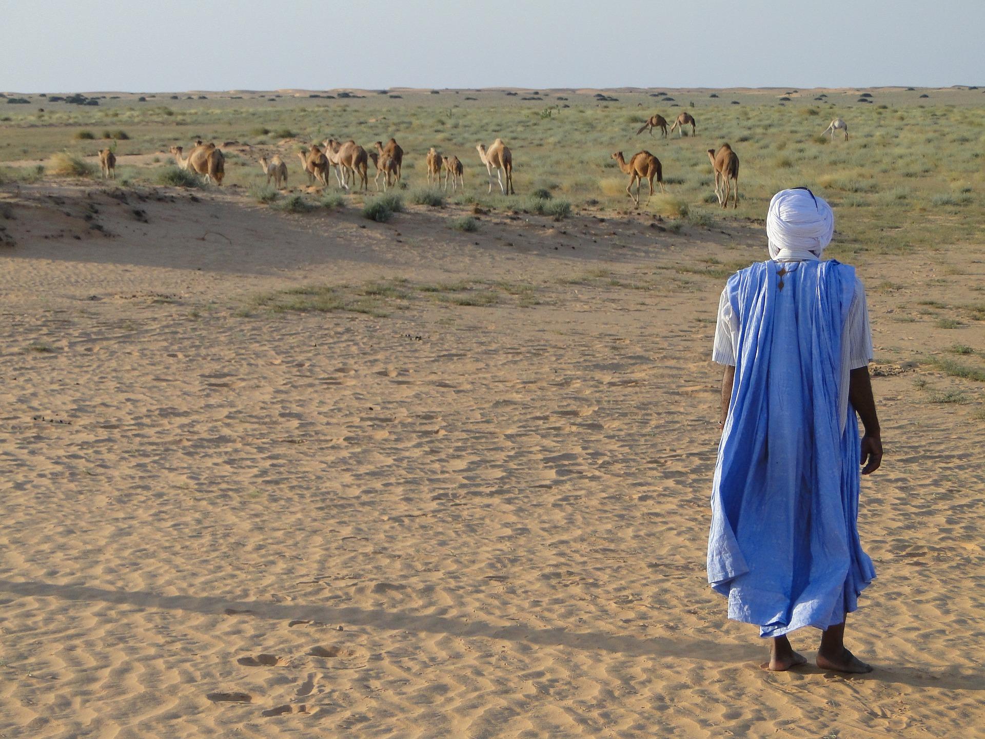 Mauritanie : la grande traversée de la Vallée Blanche