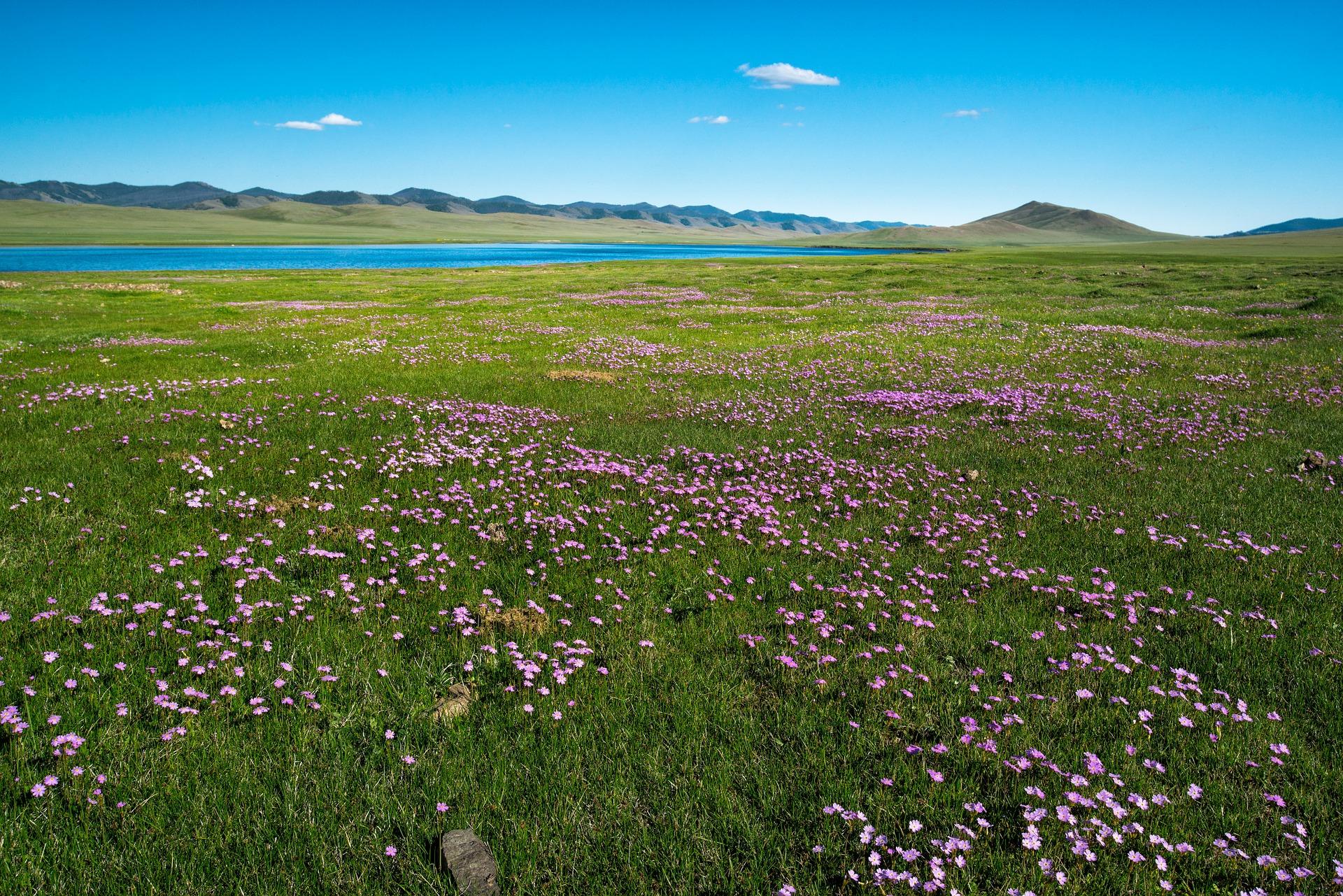Vers la perle bleue de Mongolie