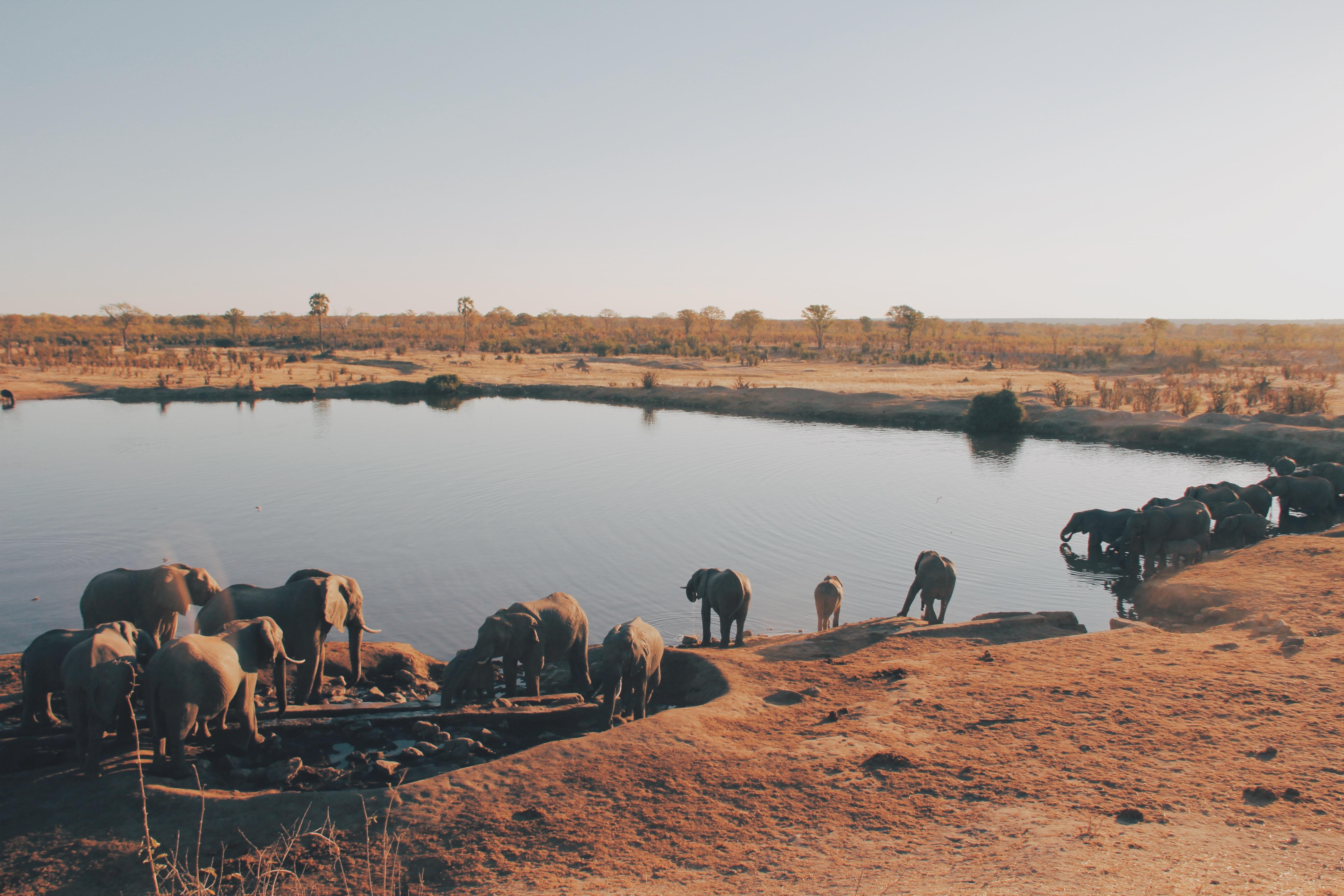 Les trésors du Zimbabwe avec guide francophone