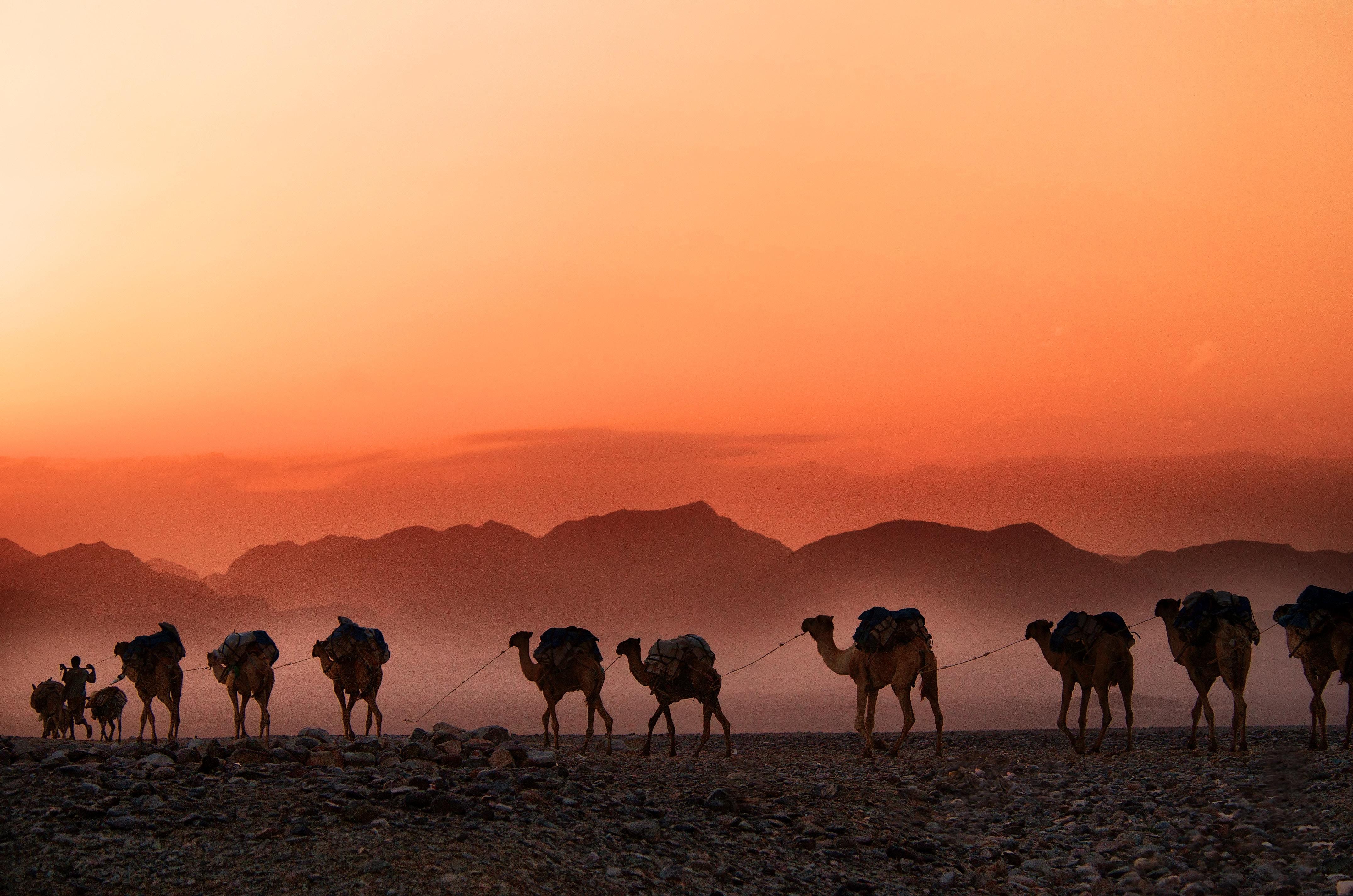 Éthiopie – Timkat : spiritualité en Éthiopie