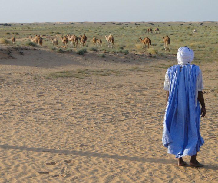 desert-mauritanie agence de voyages phileas frog paris 17.