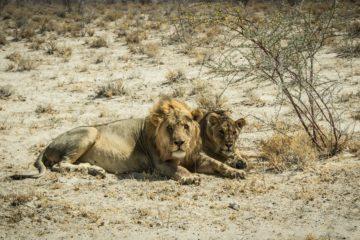 namibia-agence phileas voyage