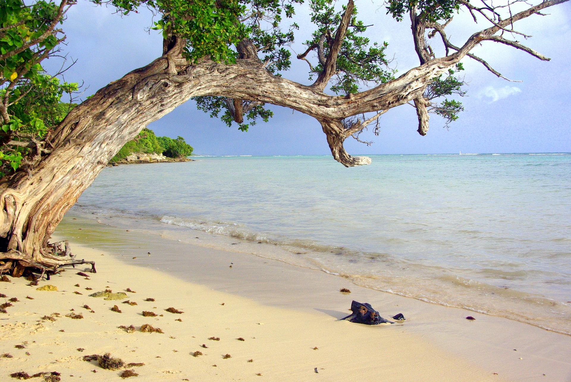 sand-guadeloupe-agence de voyages phileas frog paris 17