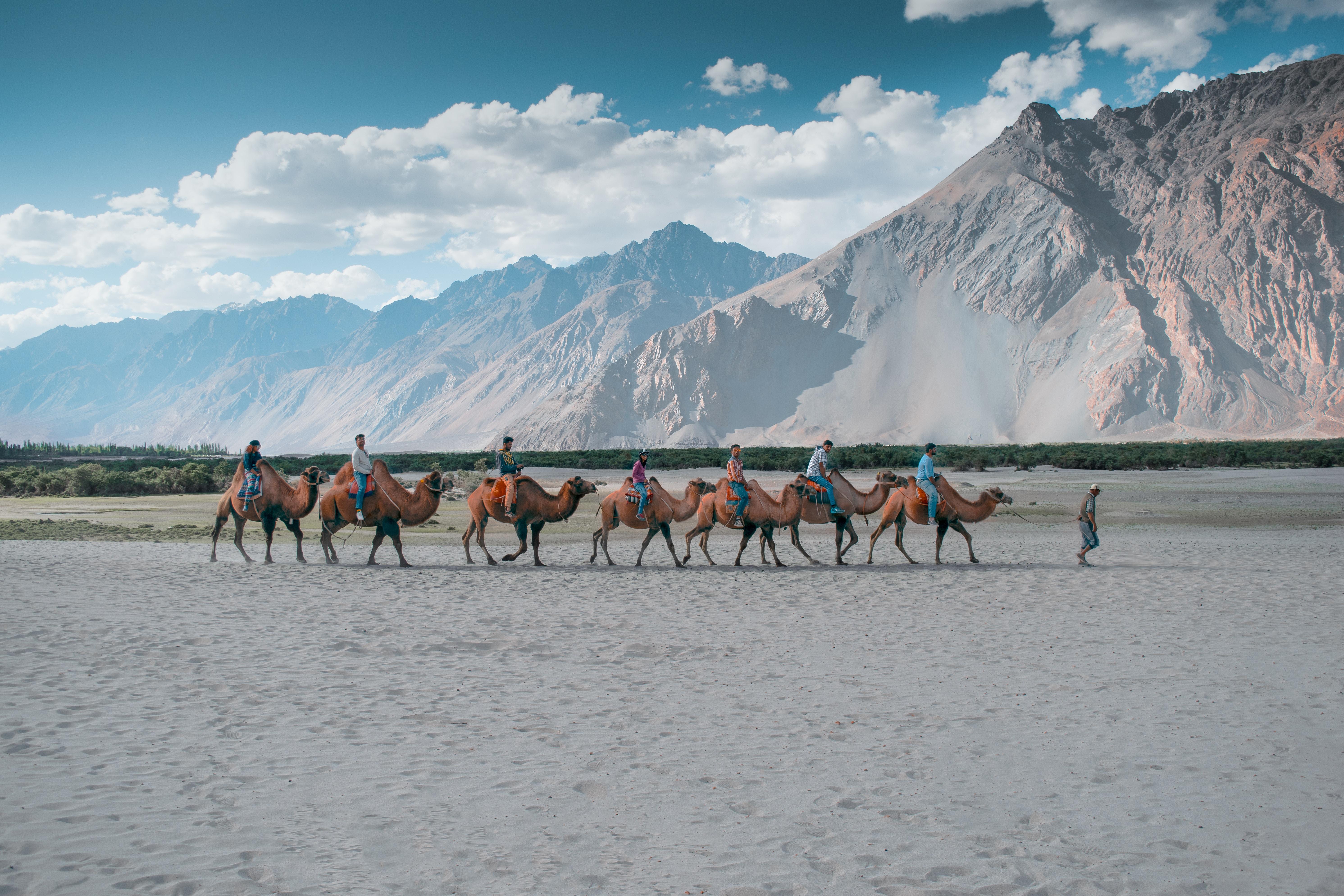 Inde Ladakh agence de voyages phileas frog paris 17 382080